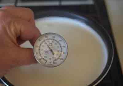 Hacer queso en casa termómetro